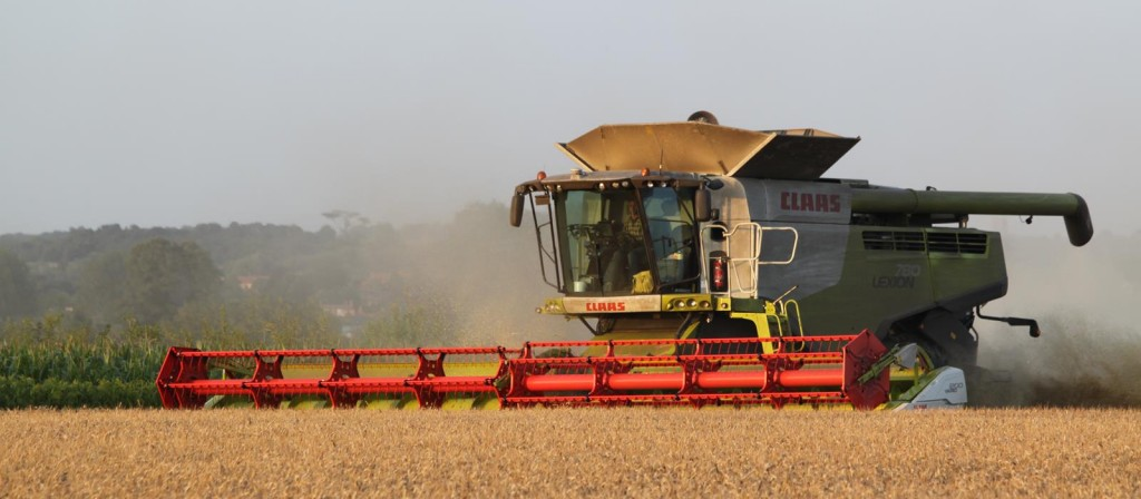 Combine on our contract farm in Suffolk
