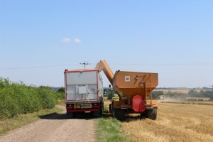 harvest 2015 haulage in essex and sufolk