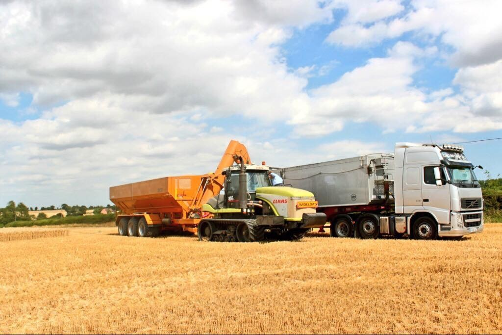 Harvest in Belchamp Walter,  Essex